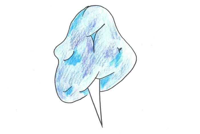 cotton_doodle