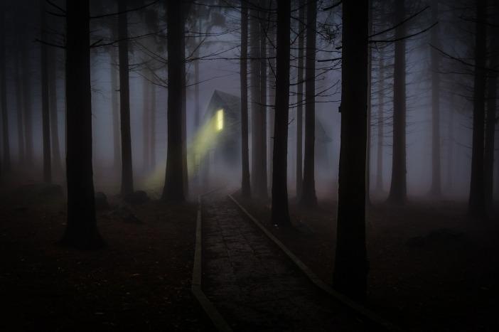 foggy-545838_1920.jpg