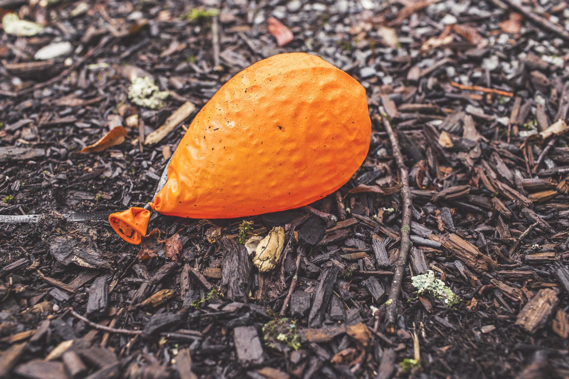 orange-698534_1920.jpg